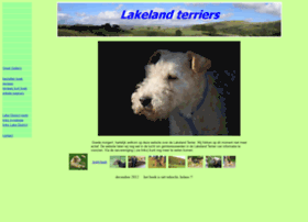 lakeland-terrier.nl