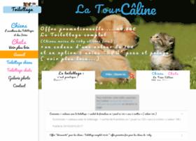 latourcaline-toilettage-paris.fr