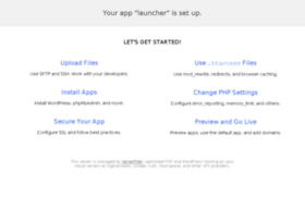 launcher.buildandshoot.com