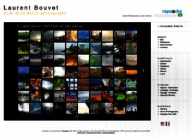 laurentbouvet.com