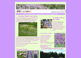 lavender-products.co.uk