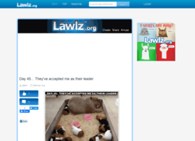 lawlz.org