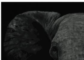 leannebyrom.com