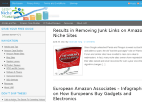 learnnichemarketing.com