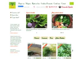 legumefericite.ro