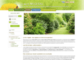 lemurvegetal.com