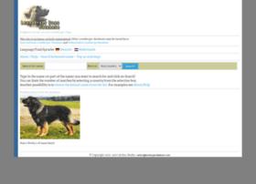 leonbergerdatabase.com
