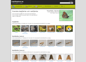 lepidoptera.se