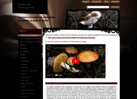 les-champignons.com