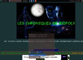 leschroniquesdebidfoly.com
