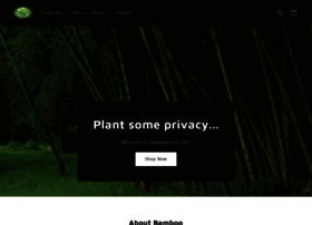 lewisbamboo.com