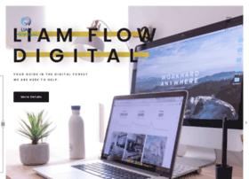 liamflowdigital.co.za