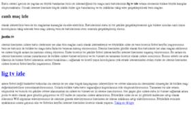 ligtvizlet.net