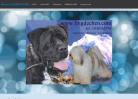 lingdechen.e-monsite.com
