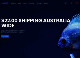 livefish.com.au