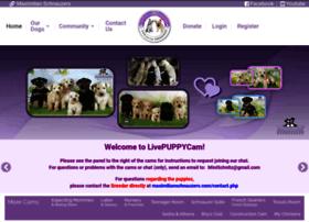 livepuppycam.com