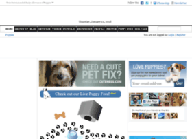 lu2.dailypuppy.com