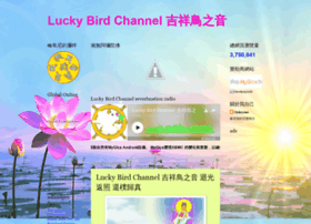 luckybirdchannel.blogspot.tw