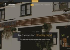 lumbini-restaurant.co.uk
