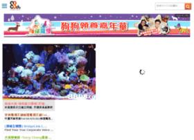 m.88db.com.hk
