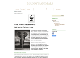 maddyanimals.blogspot.in