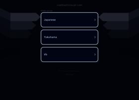 maebashivisual.com