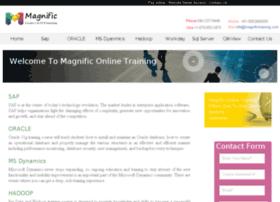 magnifictraining.com