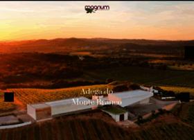 magnumimportadora.com