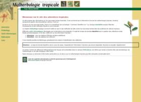 malherbologie.cirad.fr