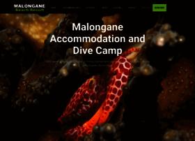malongane.com