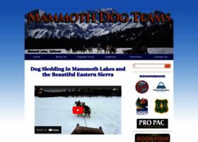 mammothdogteams.com