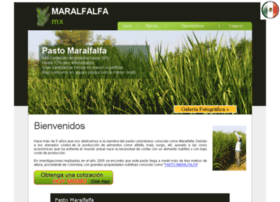 maralfalfa.mx