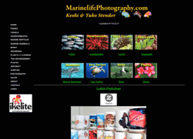 marinelifephotography.com