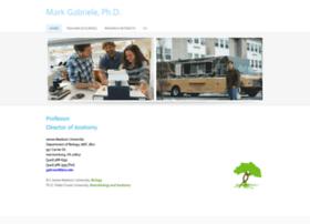 markgabriele.weebly.com