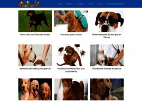 mascotass.com