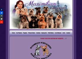 maximilianschnauzers.com