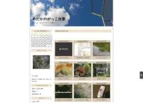 medaka.n-da.jp