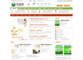 media.teauo.com