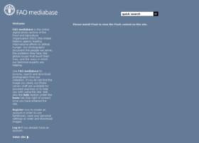 mediabase.fao.org