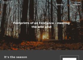 meetingsoul.wordpress.com