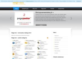 mega-lock.pl
