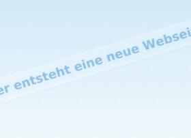 meinflyer24.com