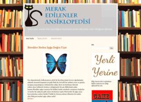 merakpedi.blogspot.com.tr
