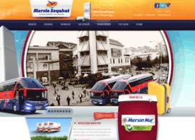 mersinseyahat.com.tr