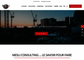 mesli-consulting.com
