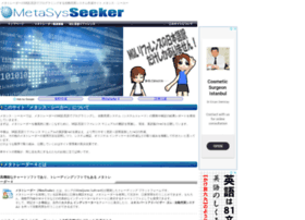 metasys-seeker.net