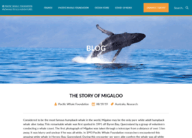 migaloowhale.org