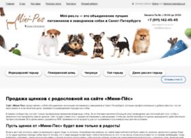 mini-pes.ru