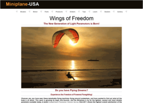 miniplane-usa.com