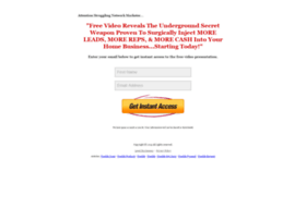 mlm.lead-system.net